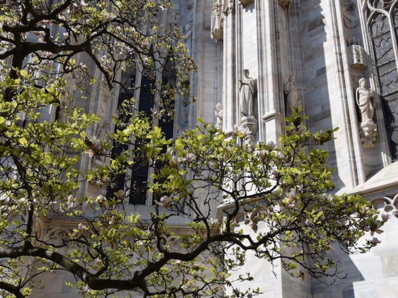 Duomo, veduta posteriore