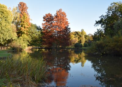 Parco Sempione, particolare