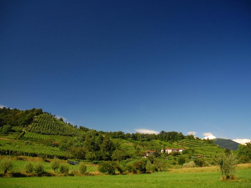 Itinerario di Montecchio